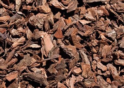 Corteza Decorativa Saco 50L - 10/20