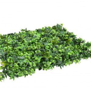 jardin vertical mahonia